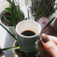koffie tulpen winter favorieten